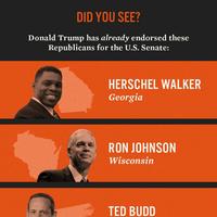 re: Trump's Senate endorsements for 2022