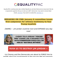 Liz Cheney just HUMILIATED Jim Jordan... OUCH!! >>