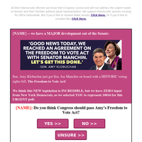 Amy Klobuchar's 𝐀𝐌𝐀𝐙𝐈𝐍𝐆 bill to SAVE voting rights! [must see]