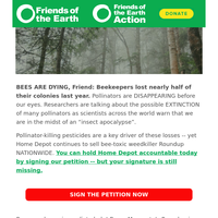 Your Signature is Missing: Bees are dying at alarming rates