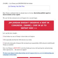Liz Cheney is going ALL-IN on Jim Jordan [!!!]