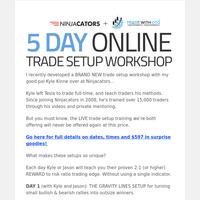 Achievement Unlocked:  LIVE 5-day trade setup workshop (online)